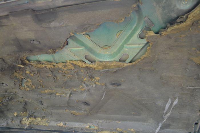 007-chewed-hood-insulation-700x467.jpg