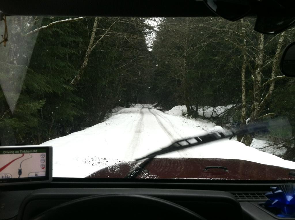 1-27-snow11.jpeg