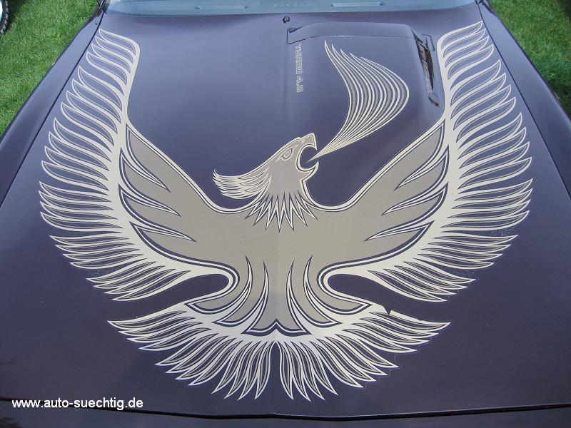 1981_pontiac_turbo_trans_am_2nd_gen_screaming_chicken.jpg