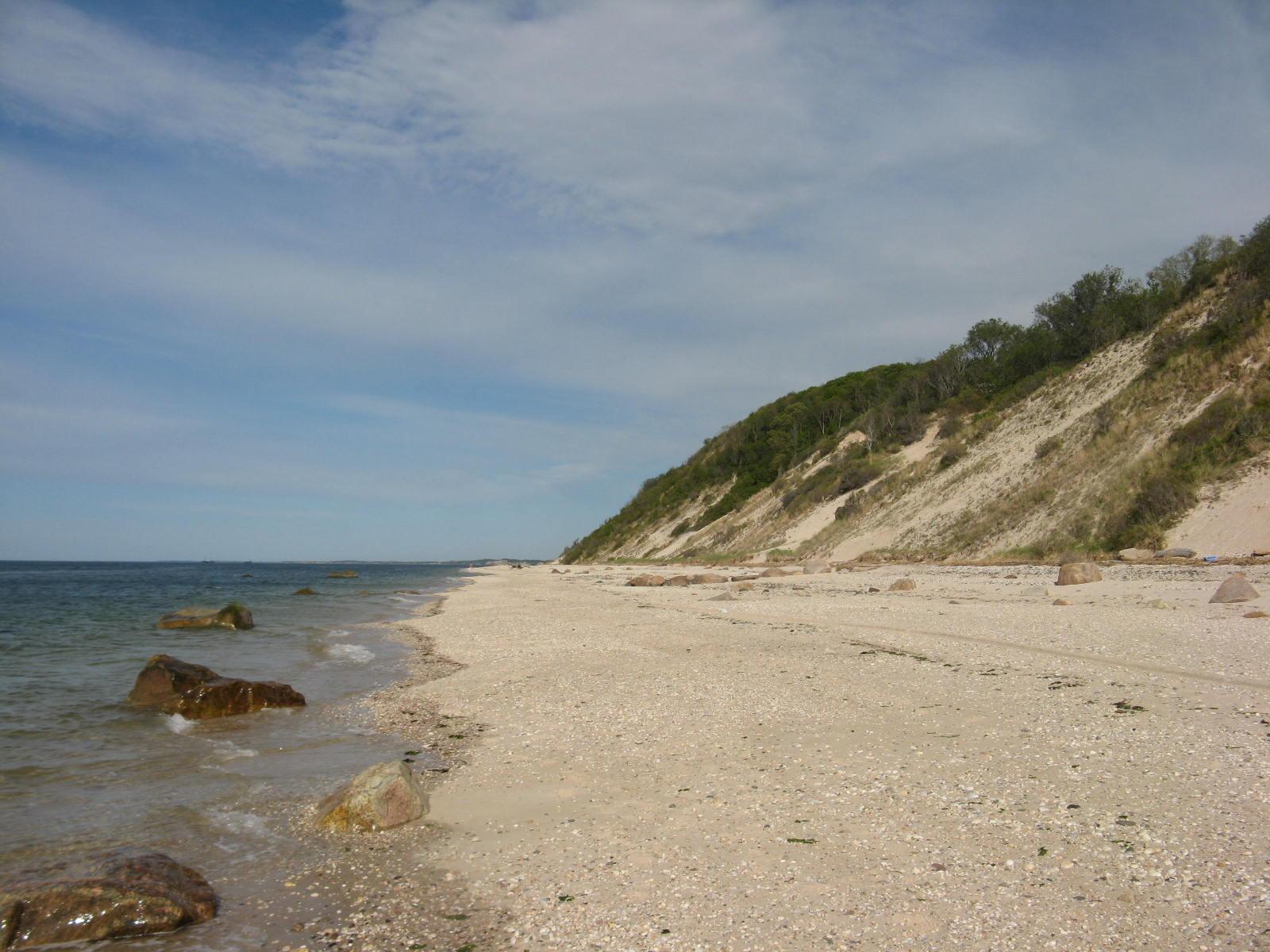 beach3may7_10.jpg
