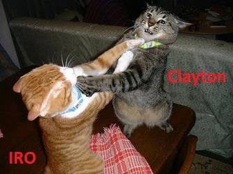 clayton-vs.-iro.jpg