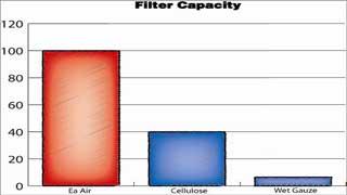 eaa_capacity_320px.jpg