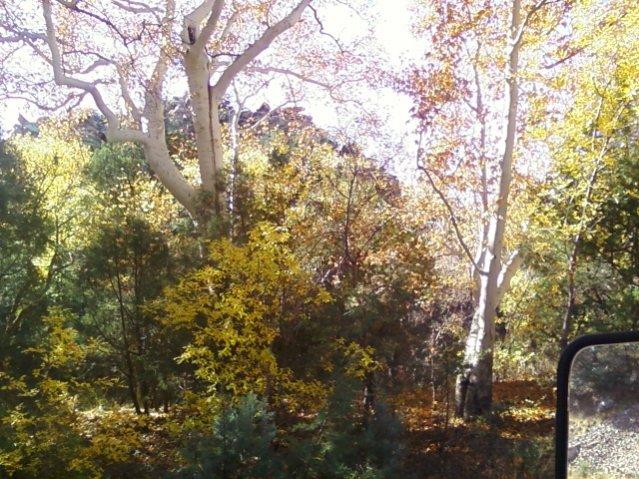 garden-canyon11.jpg