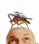 giant-mosquito-29551.jpg