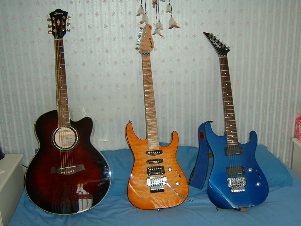 guitars2008009.jpg