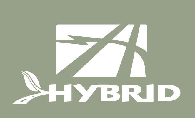 hybrid4.jpg
