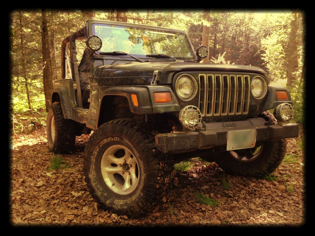 jeep-2014-spring1.jpg