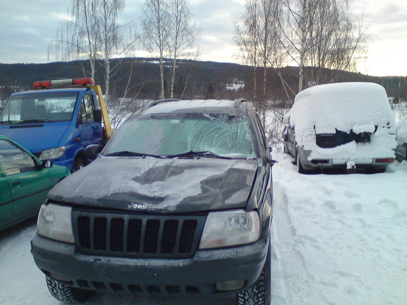 jeep-elg2.jpg