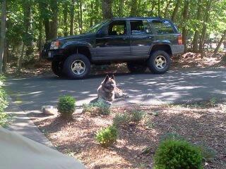 jeep-sami-017.jpg