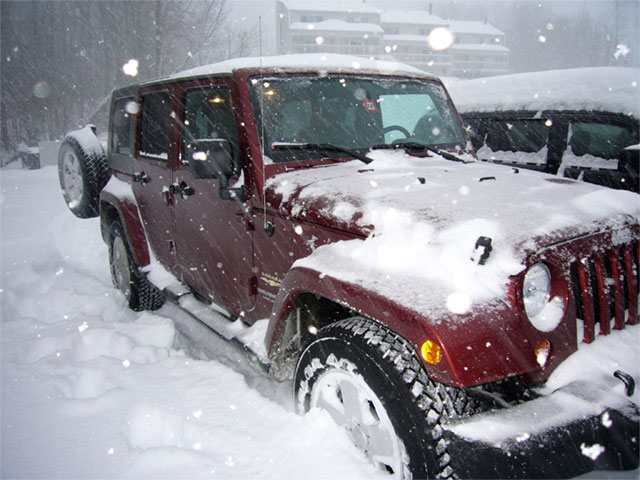 jeep-w-.jpg