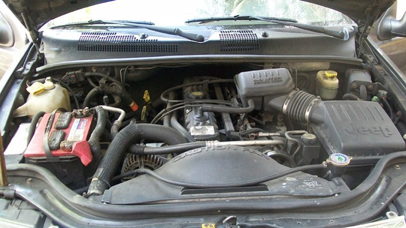 jeep10.jpg