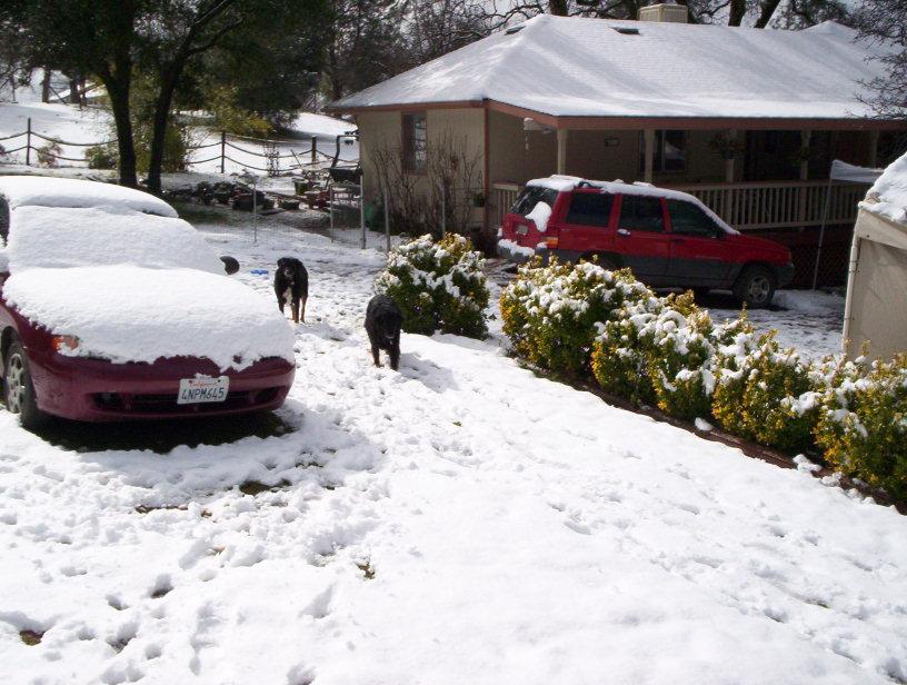 kelsey-snow-002.jpg
