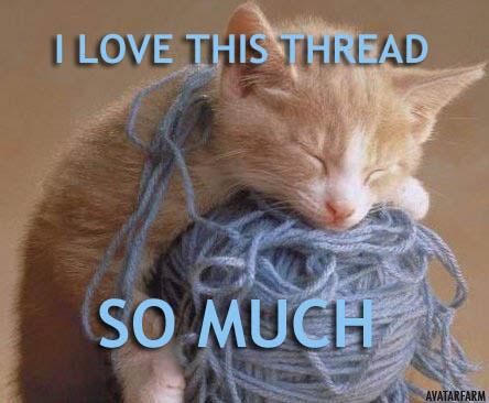 kittenlovethisthreadzh8.jpg