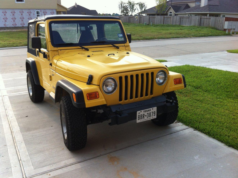 new-bumper.jpg