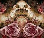 skulls95and95roses-3-1.jpg