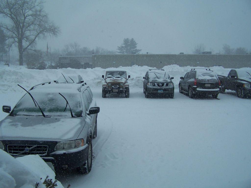 snow-feb-1-2011.jpg