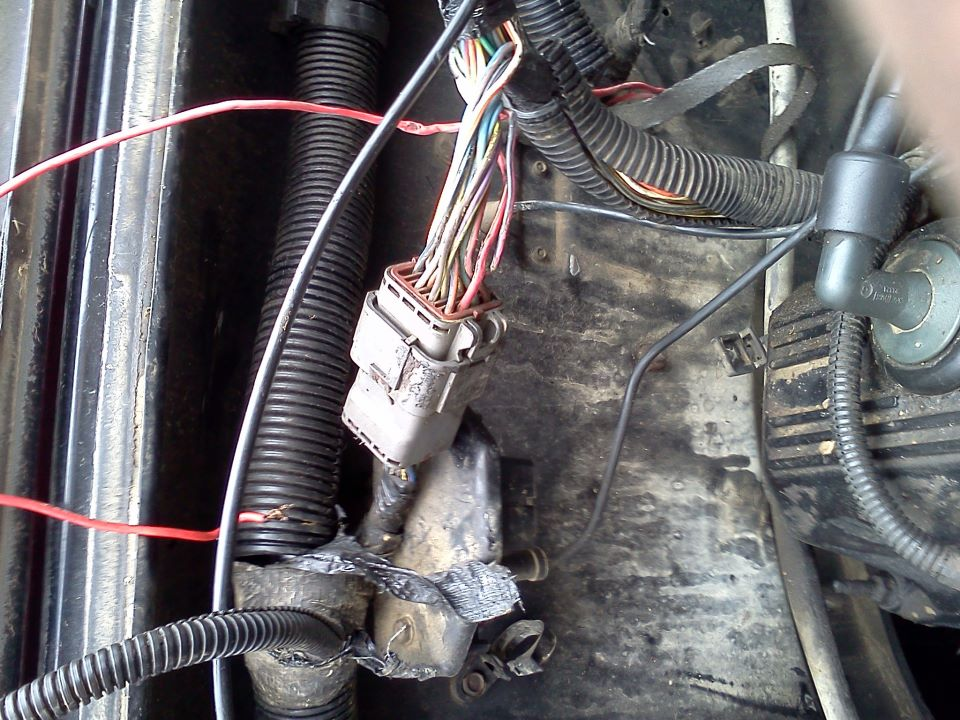stupid-wire.jpg