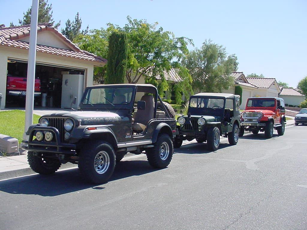 three-jeeps.jpg