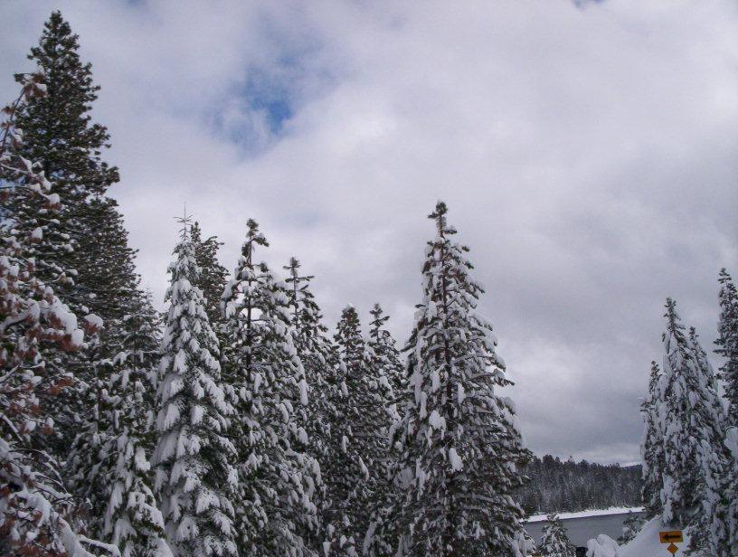 wentworth-snow-feb09-009.jpg