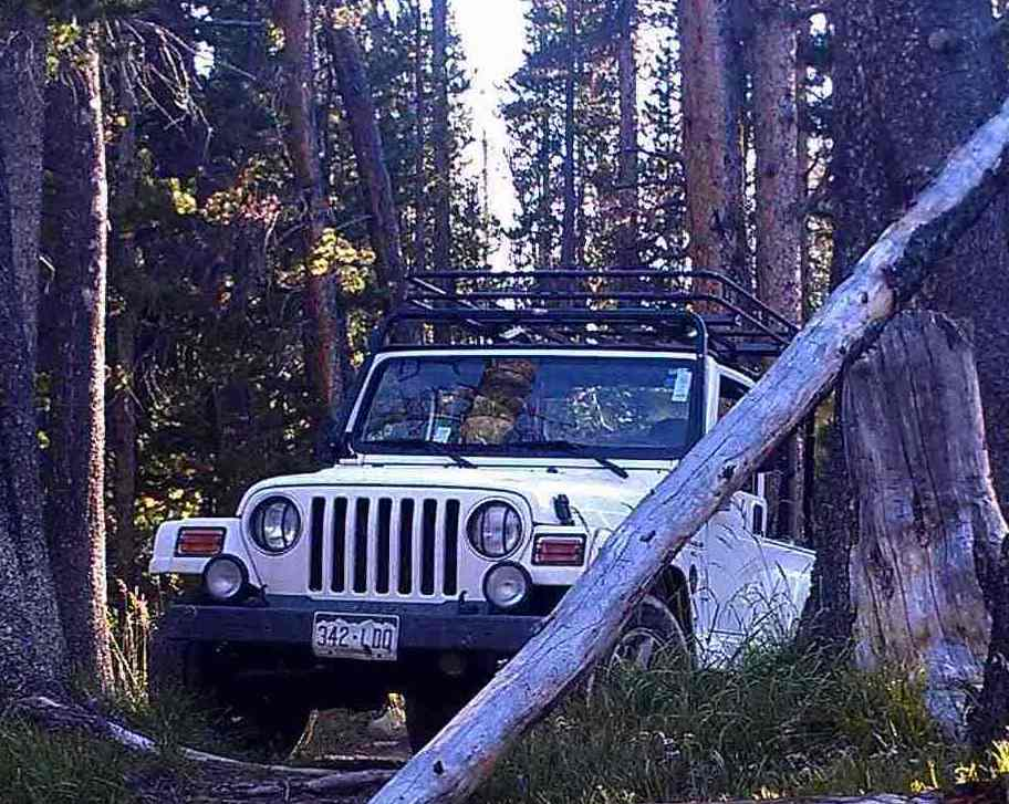 jeep1390.jpg