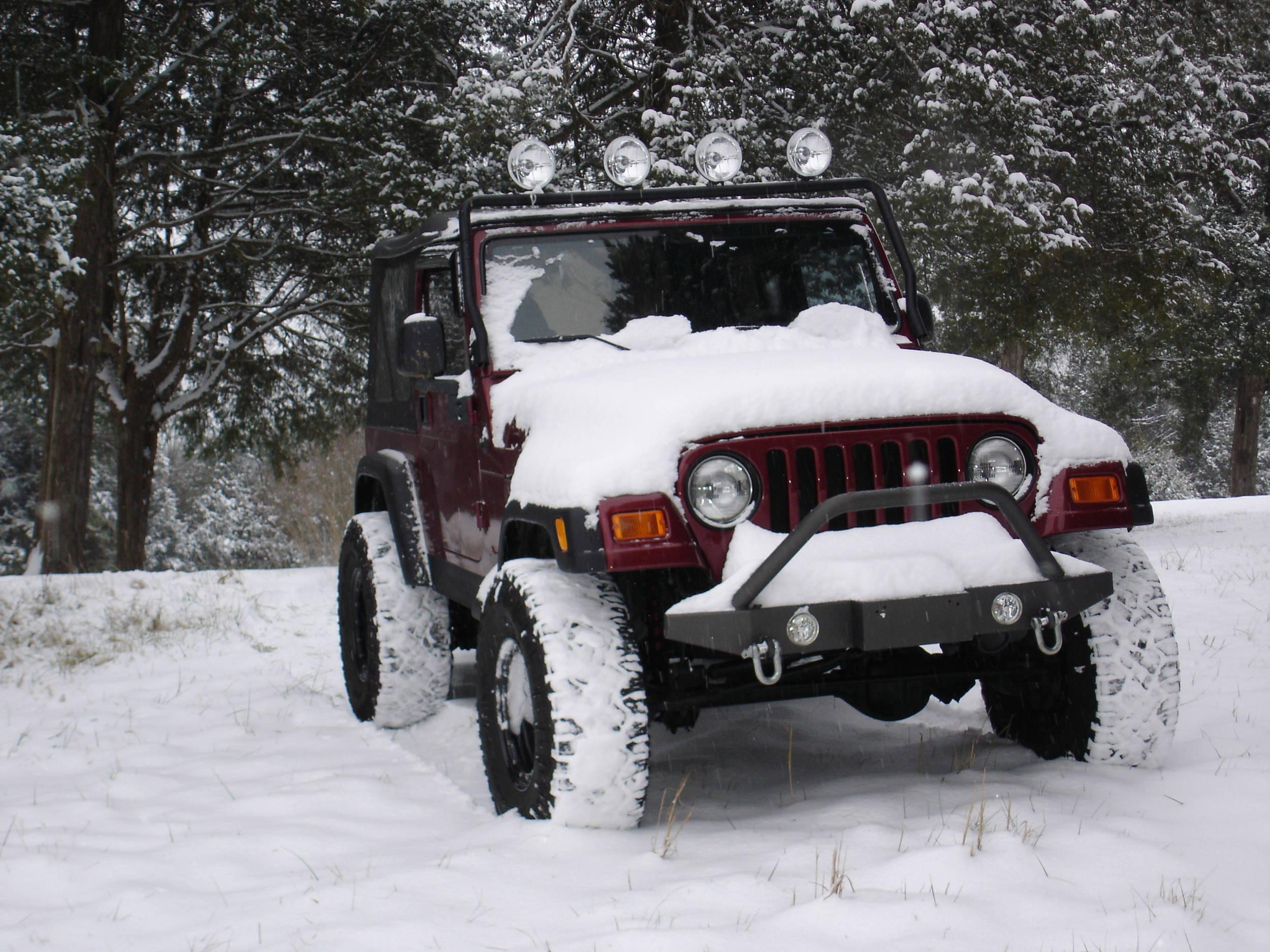 1-10-2011_snow_003.jpg