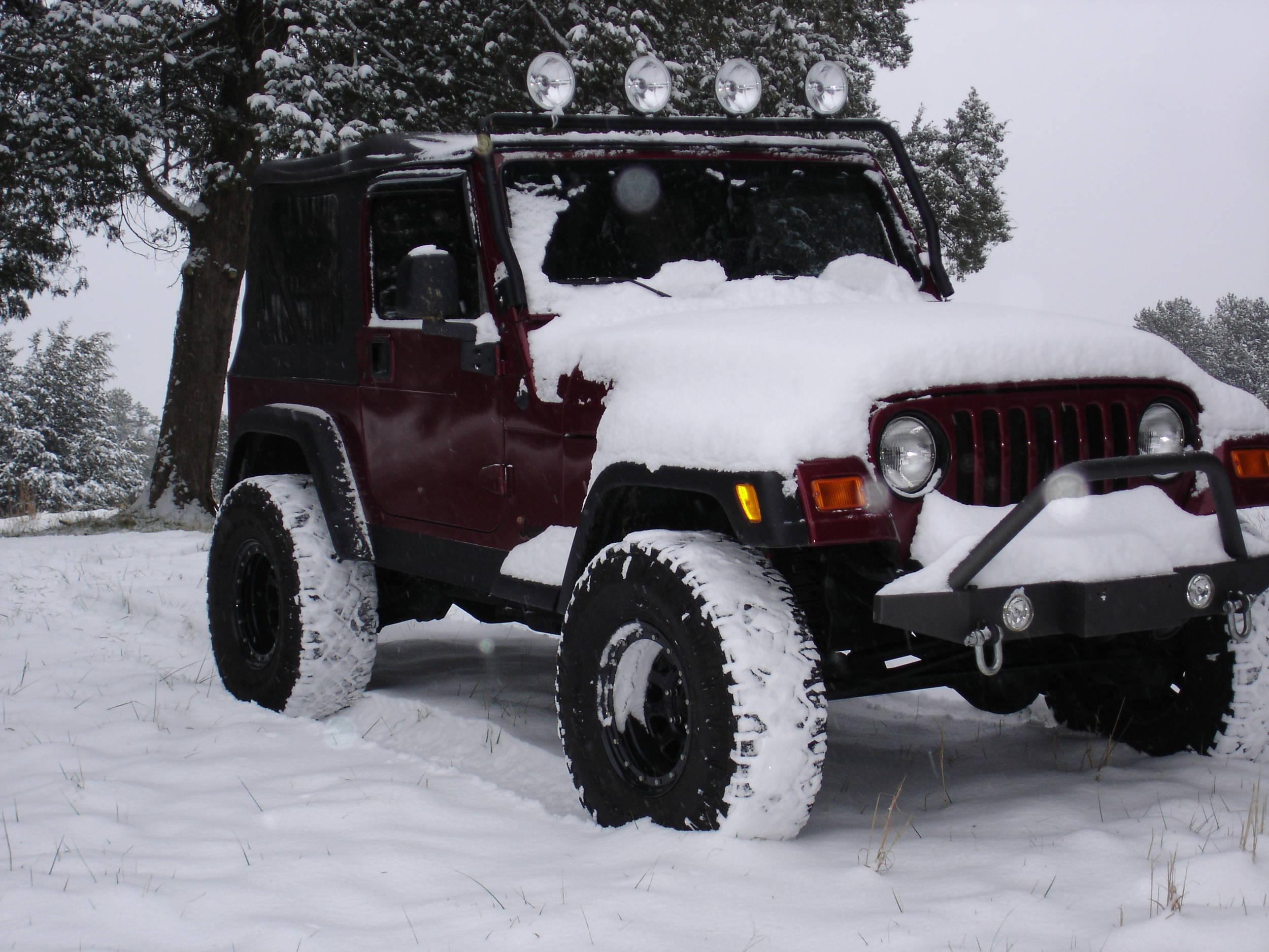 1-10-2011_snow_004.jpg