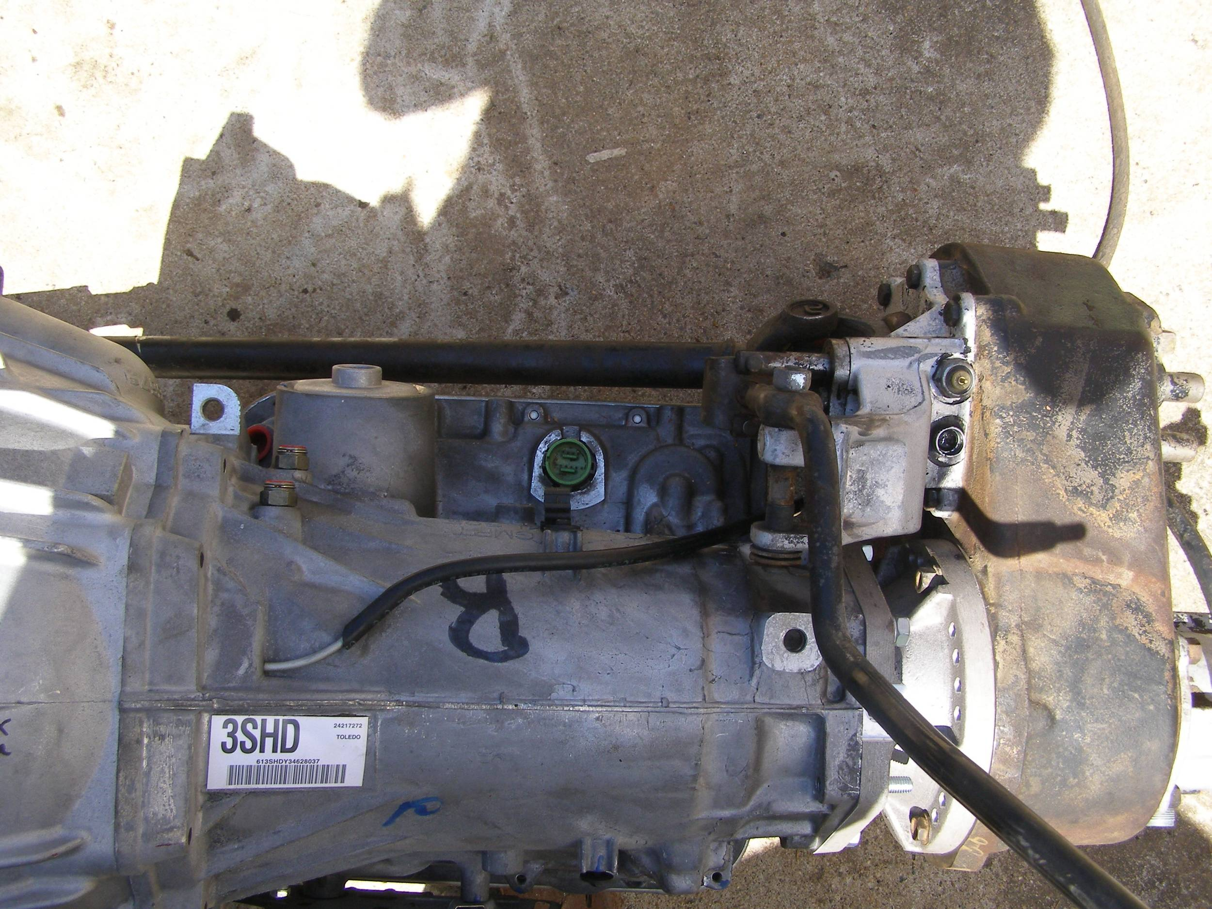 P4220016.JPG