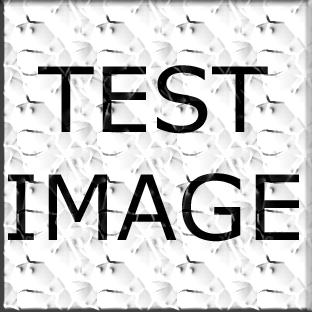 9f50538d_test_original