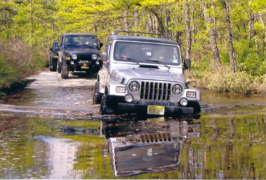 03-15-2008_91JPG.JPG