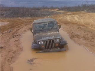 mud21.jpg
