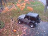 Jeep_Tall.jpg