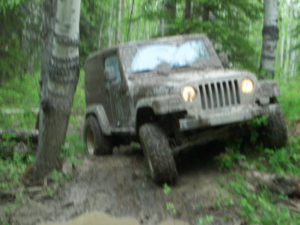 49138_jeep1.jpg