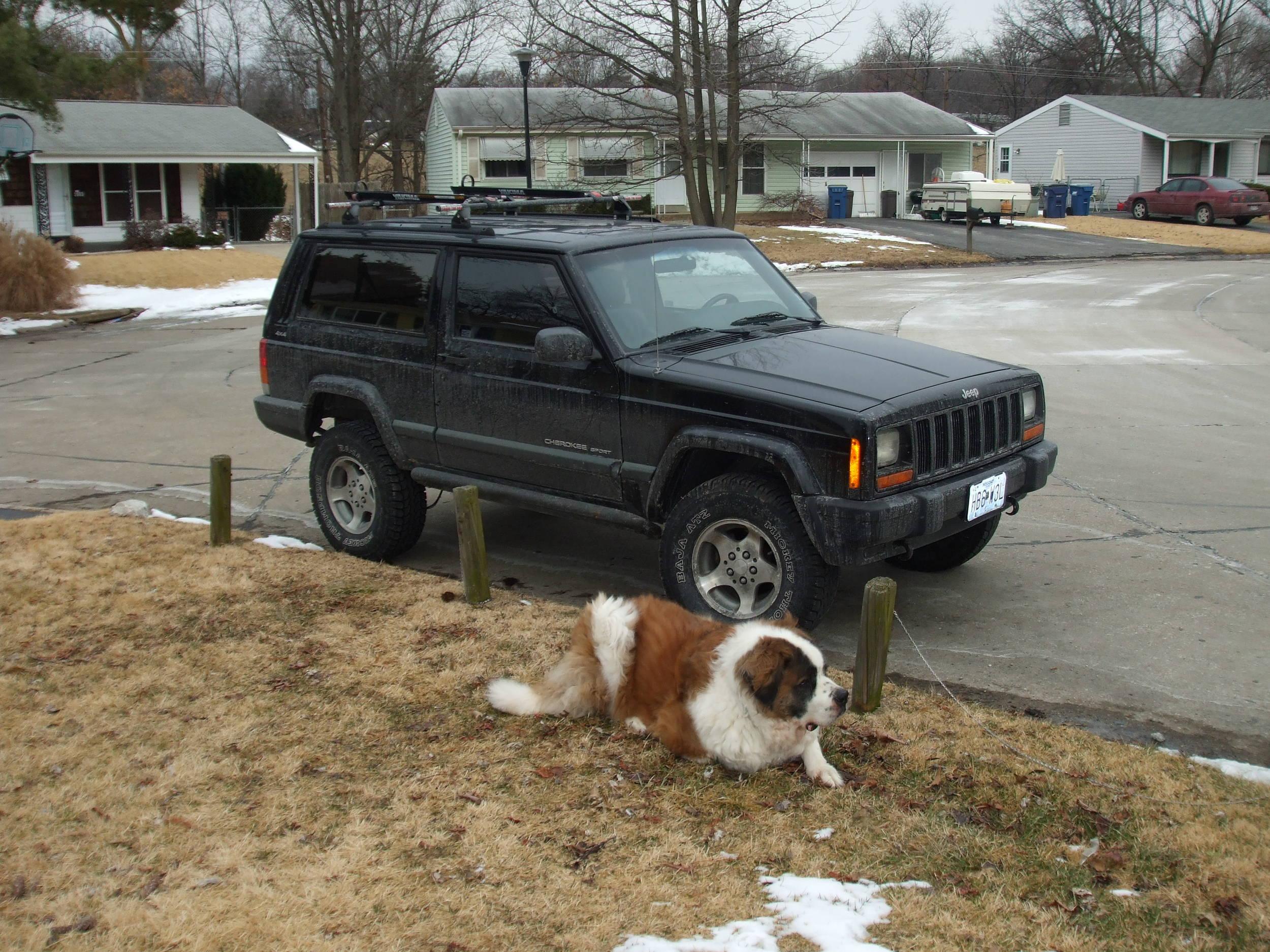 jeep_wCaesar.jpg