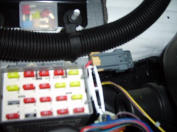 S5000451.JPG
