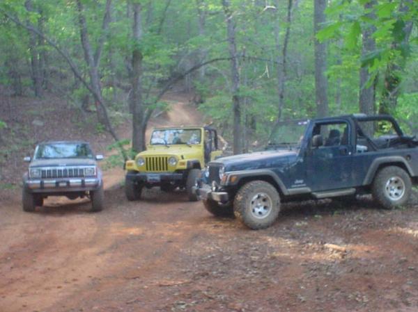 53998_jeeps.jpg