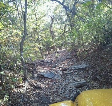 climbingthehill.jpg