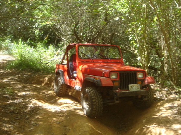 121559_jeep010.jpg