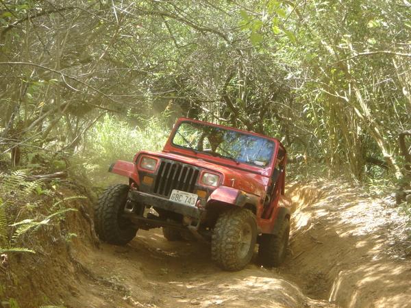 jeep017.jpg