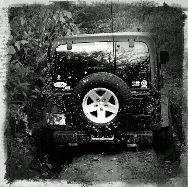 jeep1318.jpg