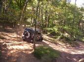 jeep423.jpg