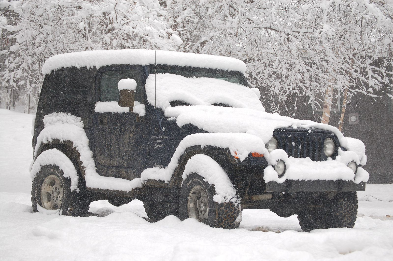 Winter_2010.JPG