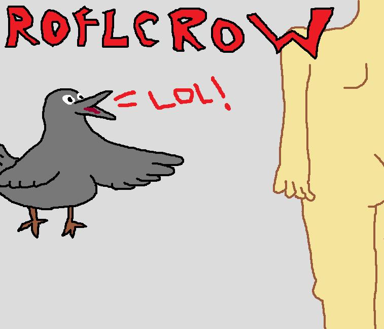 roflcrow.jpg