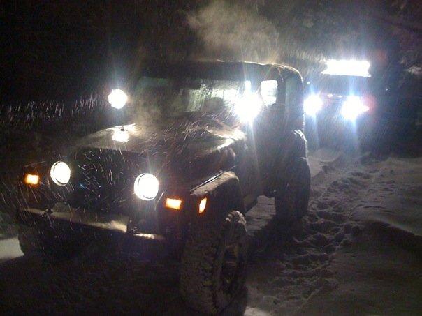 Woods Snow Dark Night