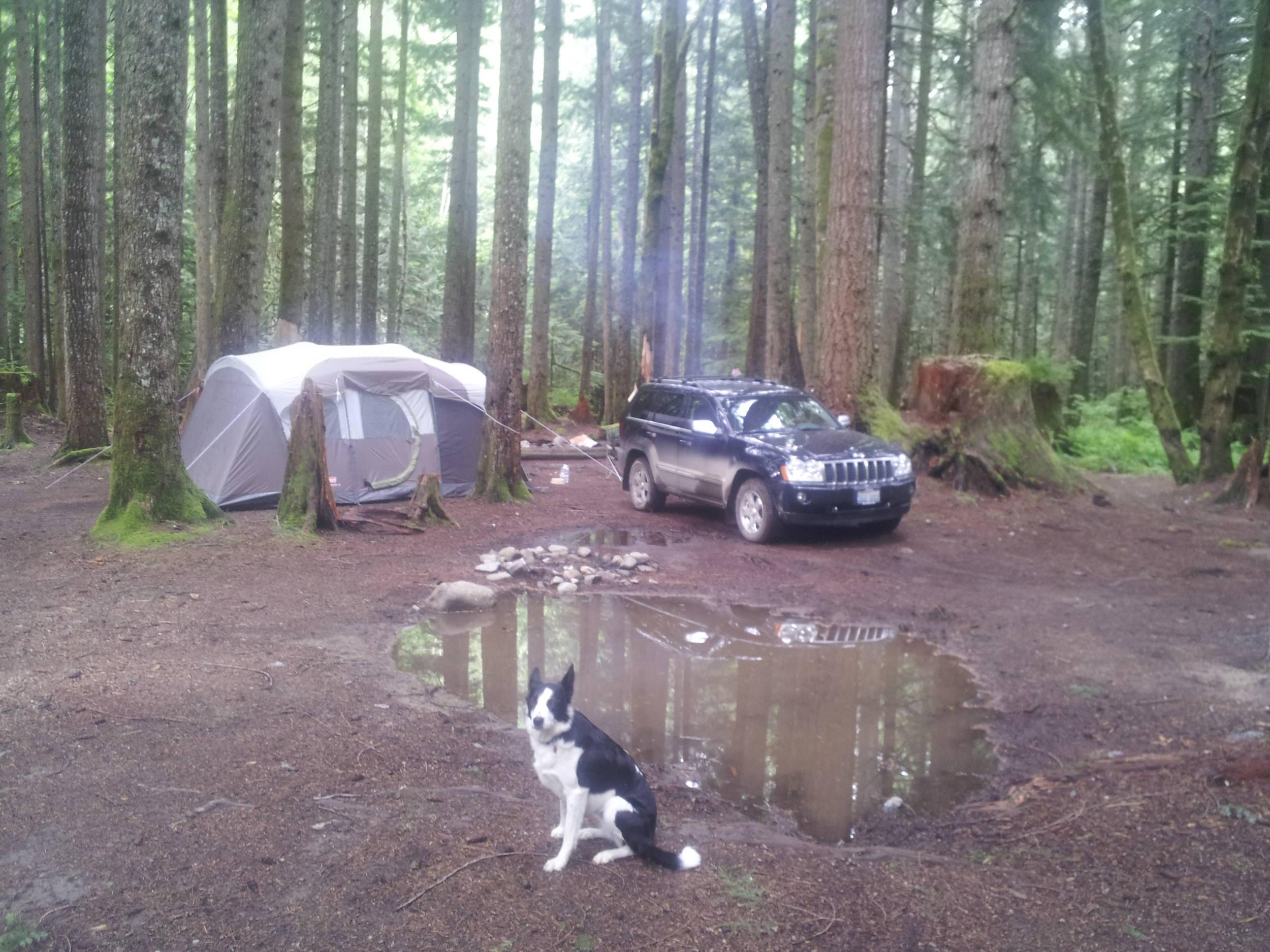 Camp_1.jpg