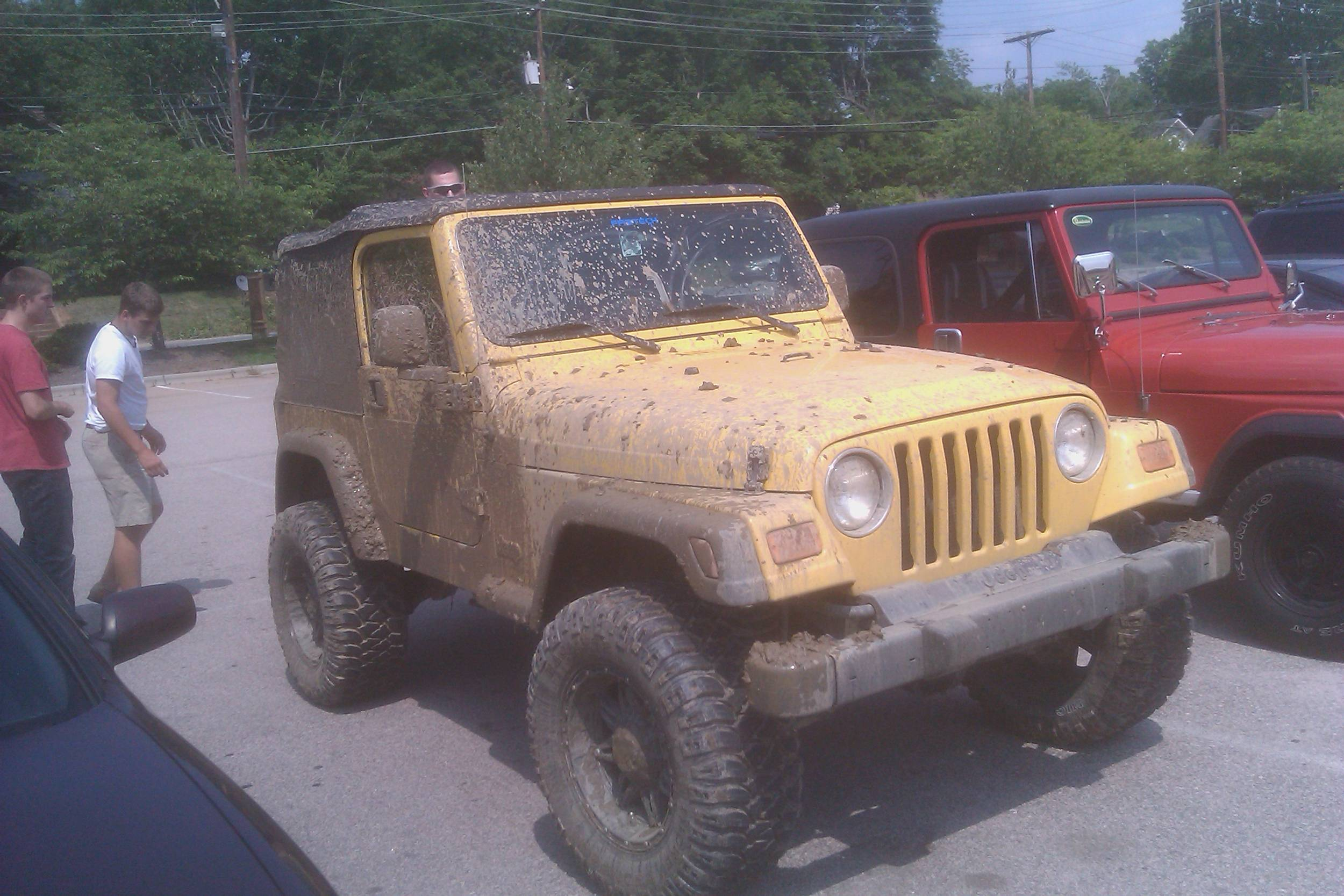 Muddy whip