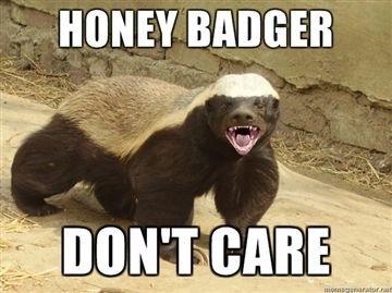 sm_honey_badger.JPG